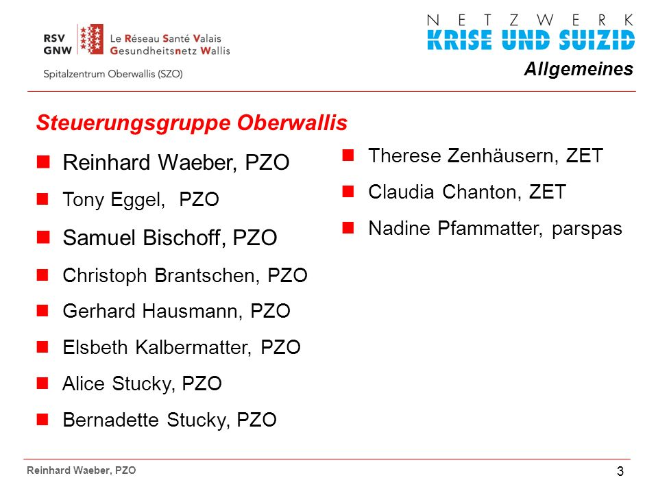 Steuerungsgruppe Oberwallis Reinhard Waeber, PZO