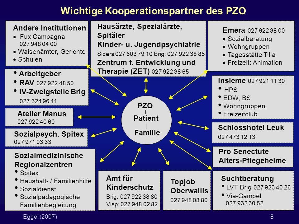 Wichtige Kooperationspartner des PZO