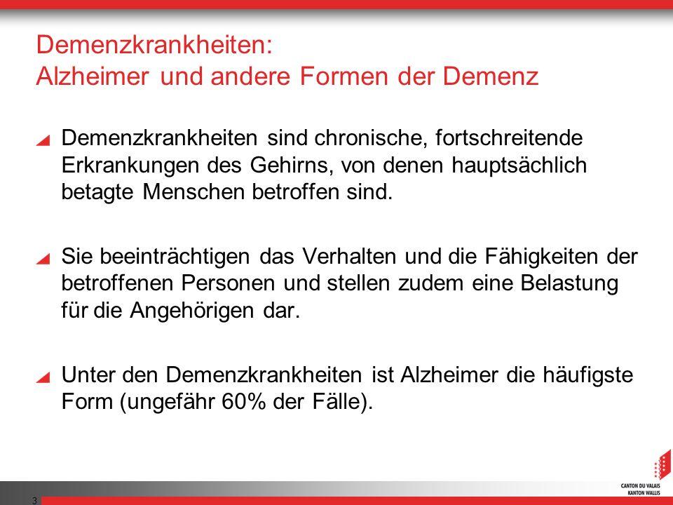 Demenzkrankheiten: Alzheimer und andere Formen der Demenz