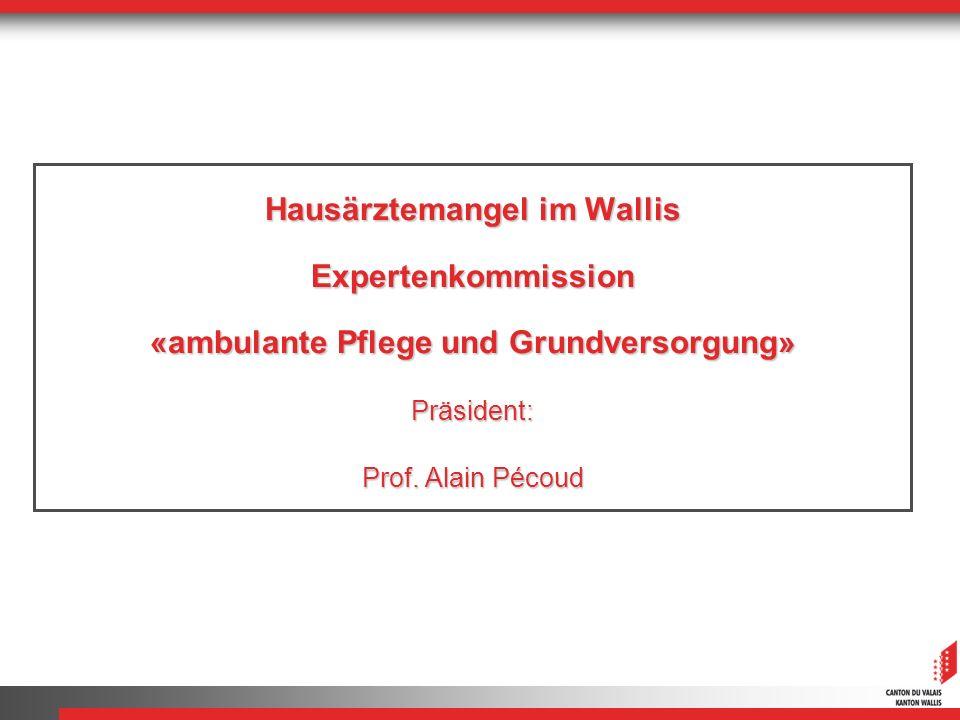 Hausärztemangel im Wallis Expertenkommission «ambulante Pflege und Grundversorgung» Präsident: Prof.