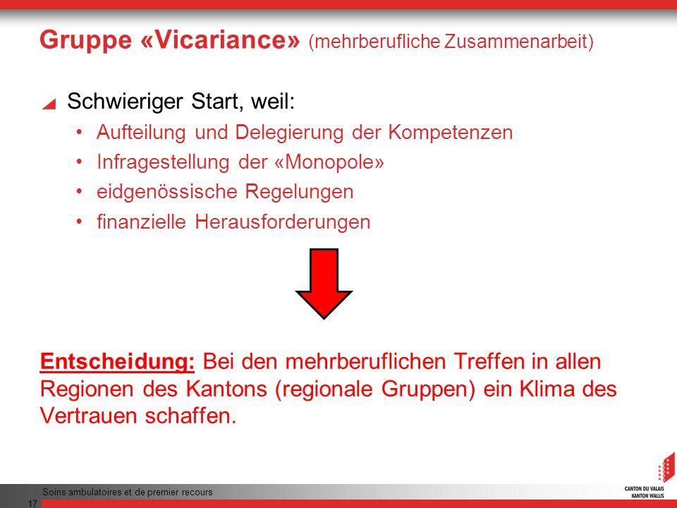 Gruppe «Vicariance» (mehrberufliche Zusammenarbeit)