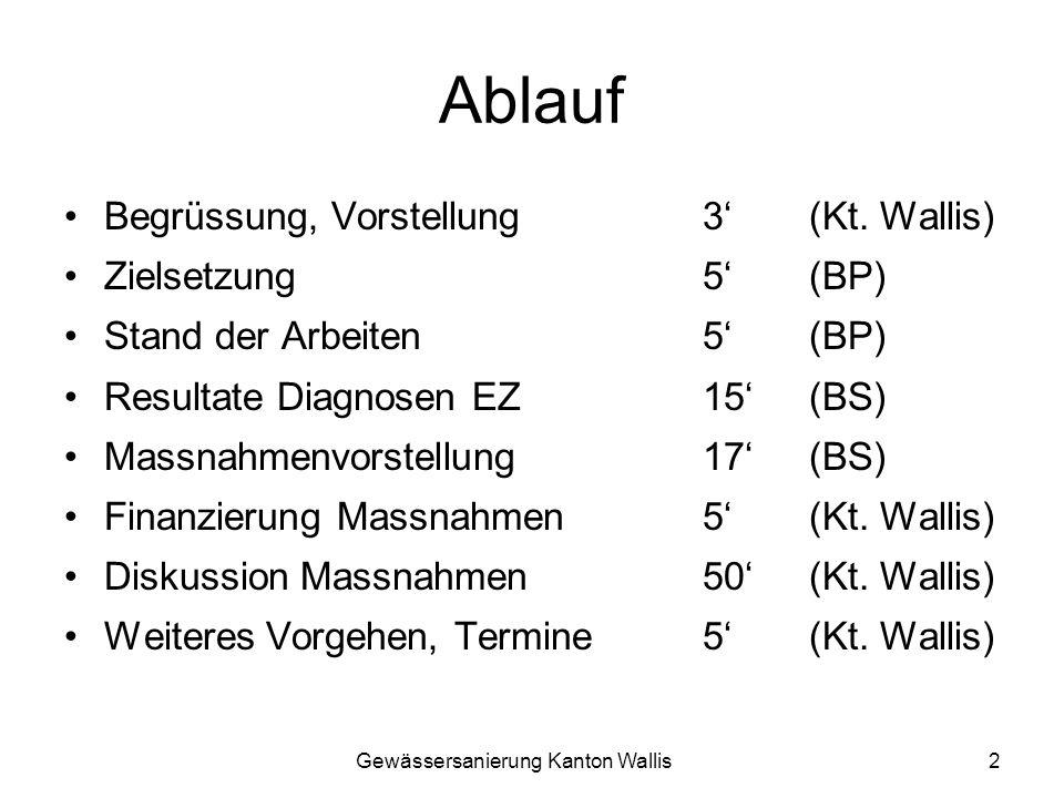 Ablauf Begrüssung, Vorstellung 3' (Kt. Wallis) Zielsetzung 5' (BP)