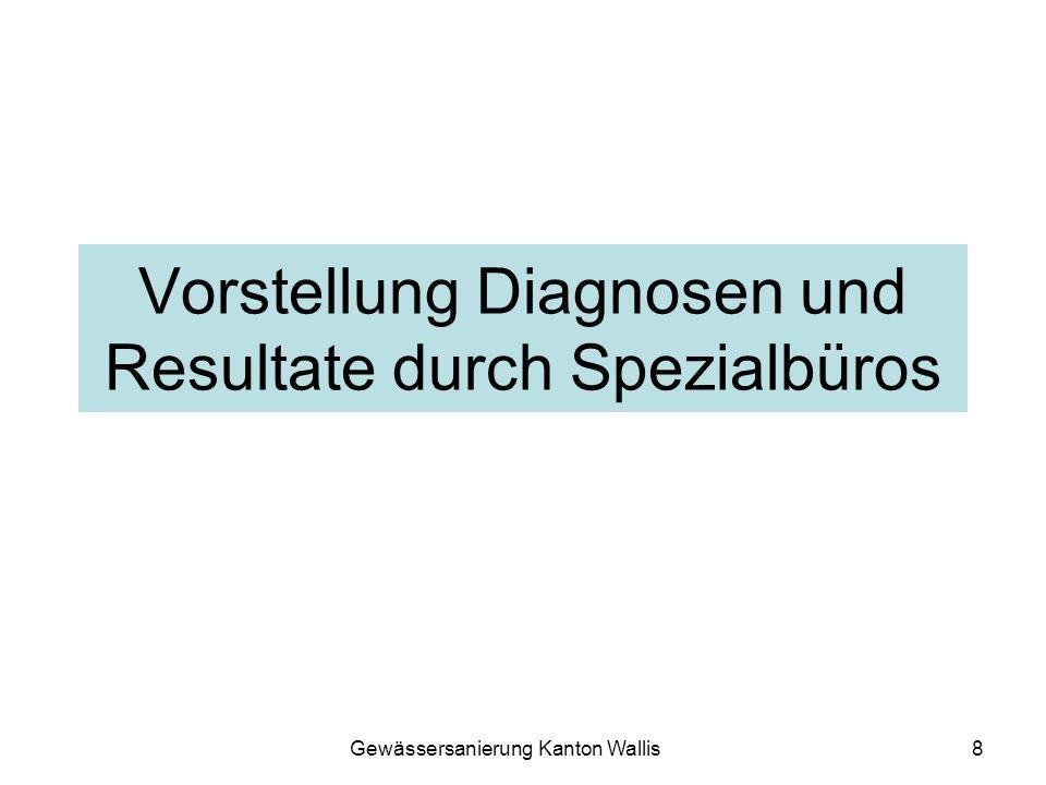 Vorstellung Diagnosen und Resultate durch Spezialbüros
