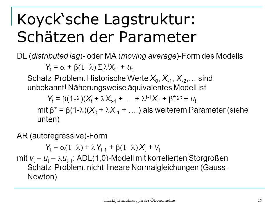 Koyck'sche Lagstruktur: Schätzen der Parameter