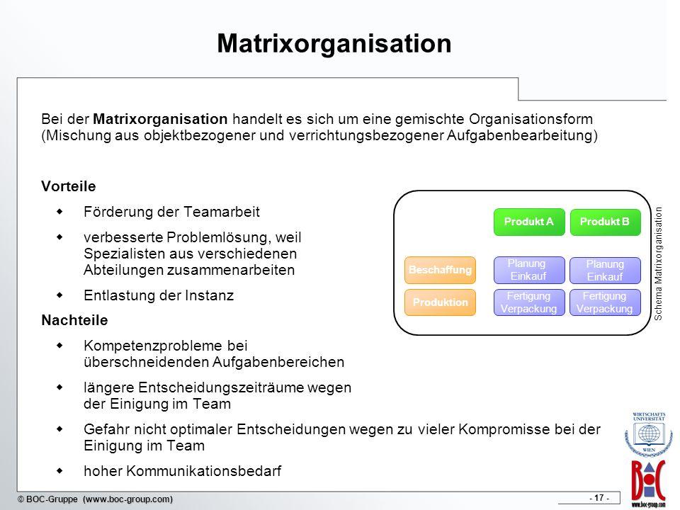 Schema Matrixorganisation