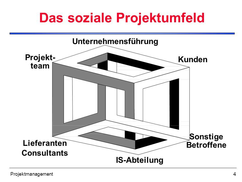 Das soziale Projektumfeld