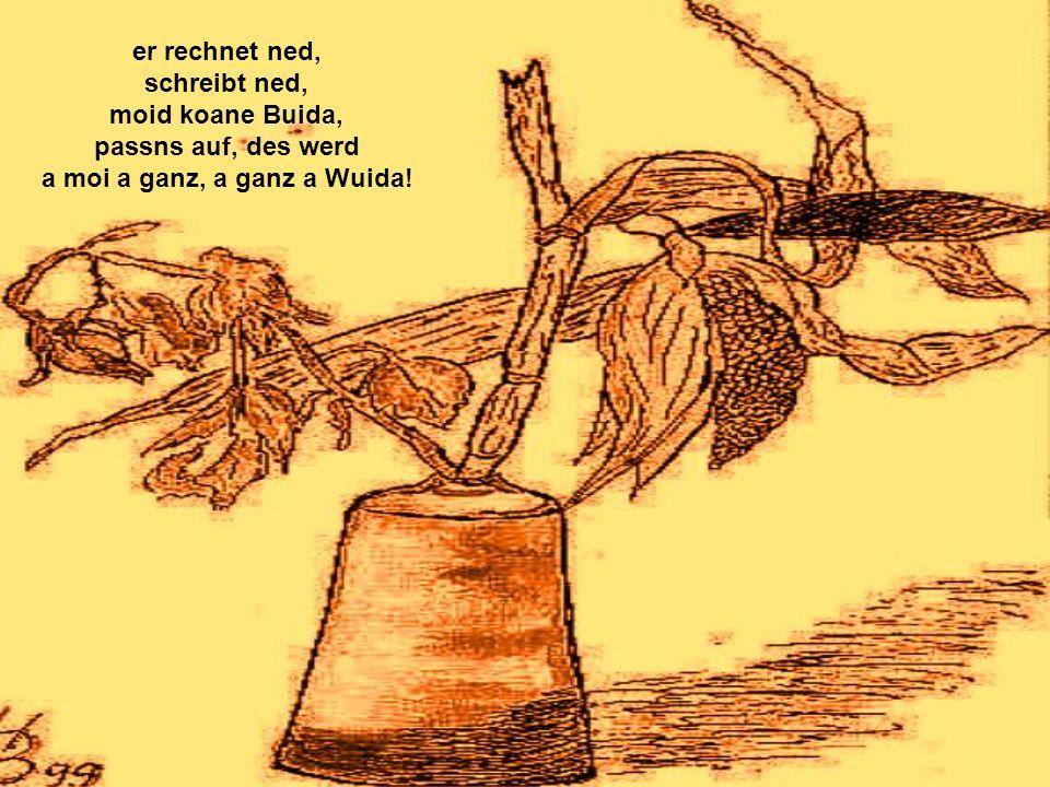 er rechnet ned, schreibt ned, moid koane Buida, passns auf, des werd a moi a ganz, a ganz a Wuida!