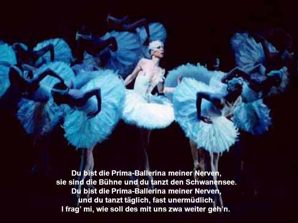 Du bist die Prima-Ballerina meiner Nerven,