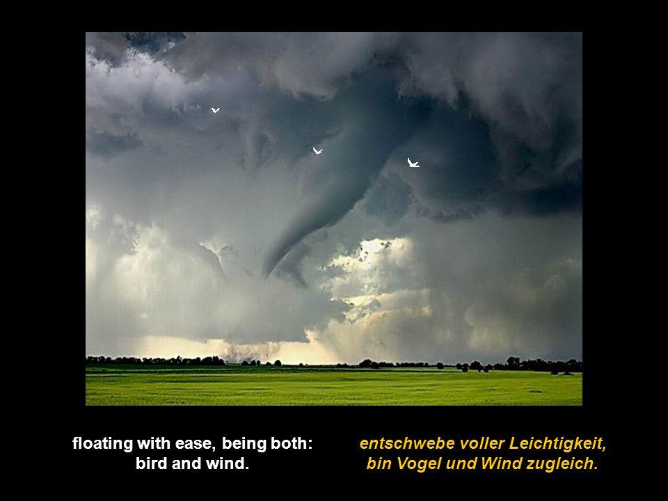 floating with ease, being both: bin Vogel und Wind zugleich.