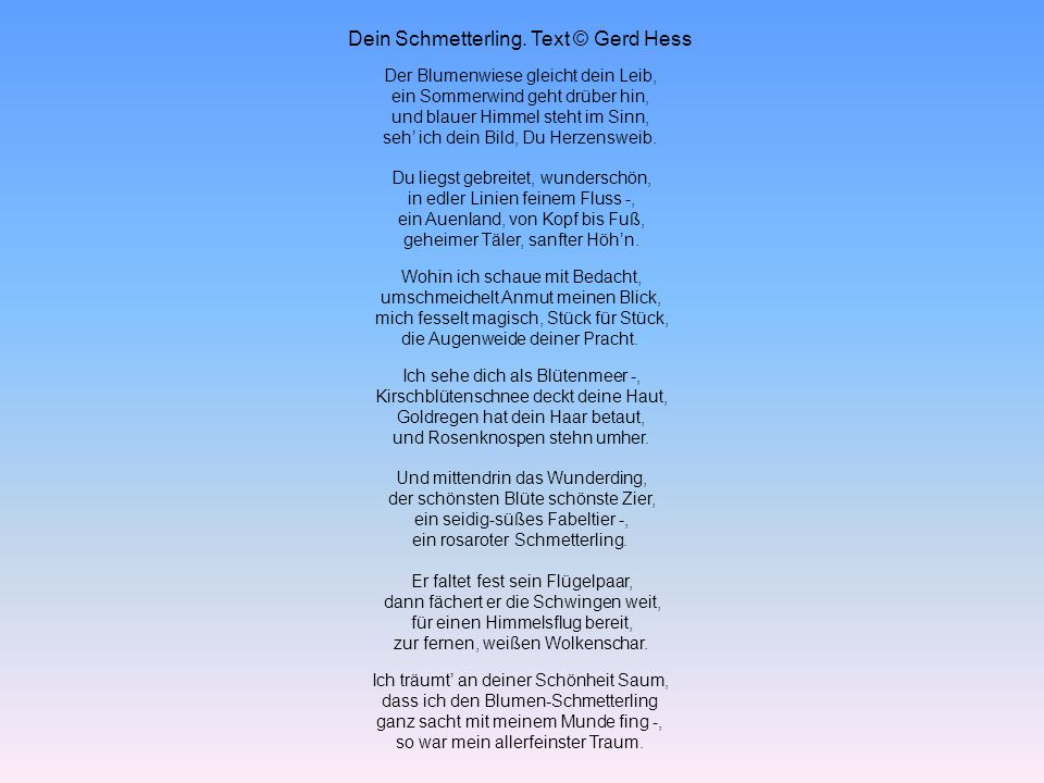 Dein Schmetterling. Text © Gerd Hess