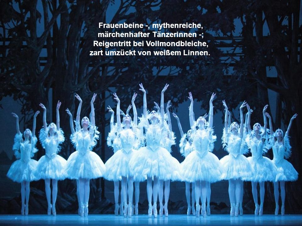 Frauenbeine -, mythenreiche, märchenhafter Tänzerinnen -; Reigentritt bei Vollmondbleiche, zart umzückt von weißem Linnen.