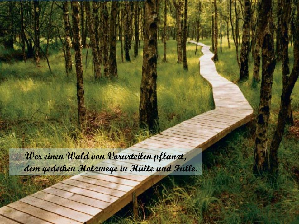 Wer einen Wald von Vorurteilen pflanzt, dem gedeihen Holzwege in Hülle und Fülle.