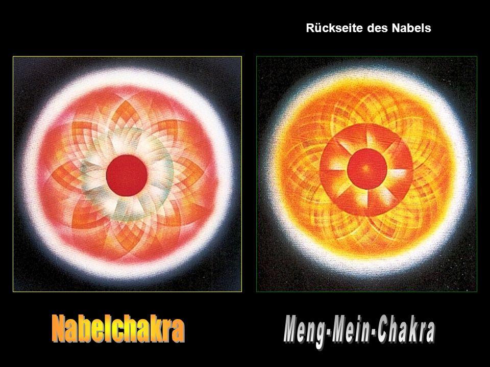 Rückseite des Nabels Nabelchakra Meng-Mein-Chakra