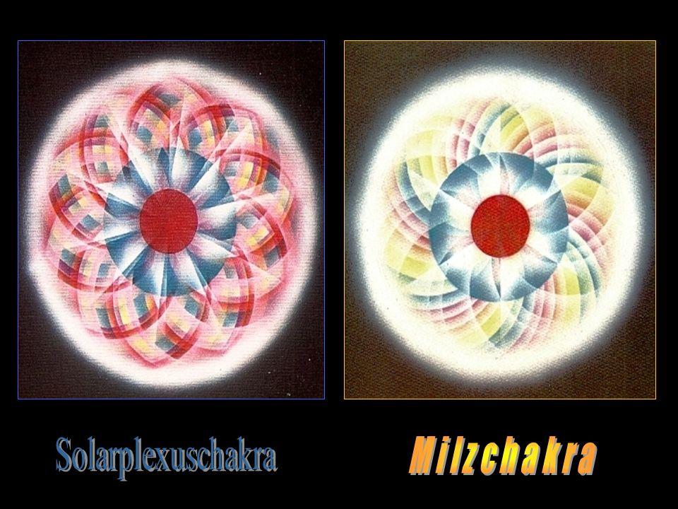 Solarplexuschakra M i l z c h a k r a