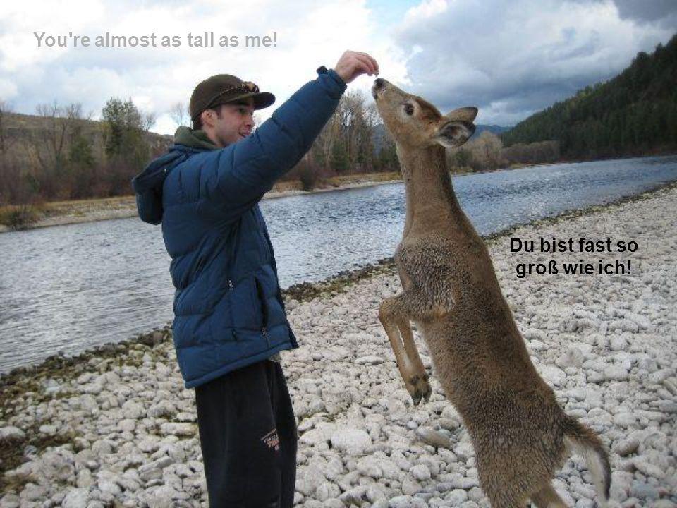 Du bist fast so groß wie ich!