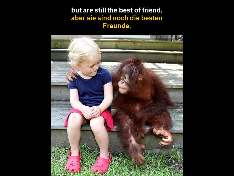 but are still the best of friend,