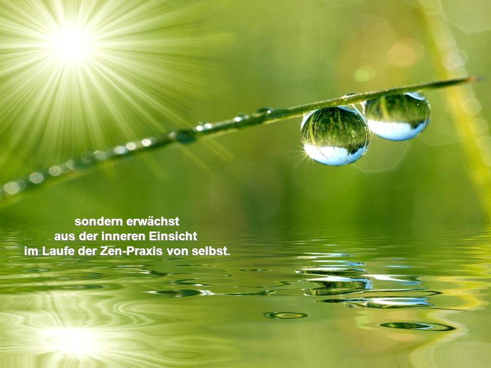 aus der inneren Einsicht im Laufe der Zen-Praxis von selbst.