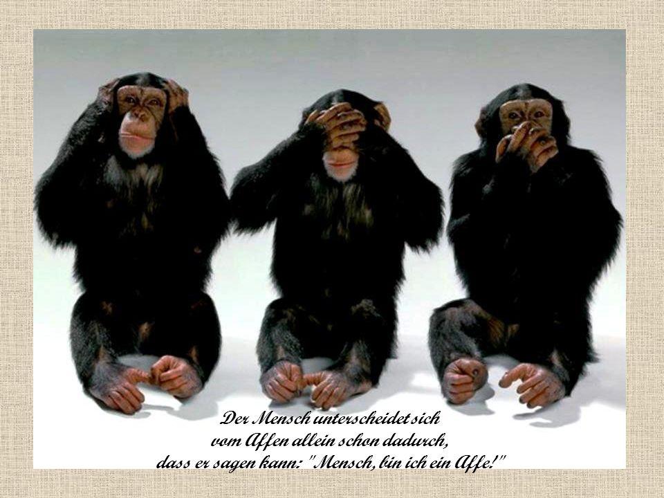 Der Mensch unterscheidet sich vom Affen allein schon dadurch, dass er sagen kann: Mensch, bin ich ein Affe!