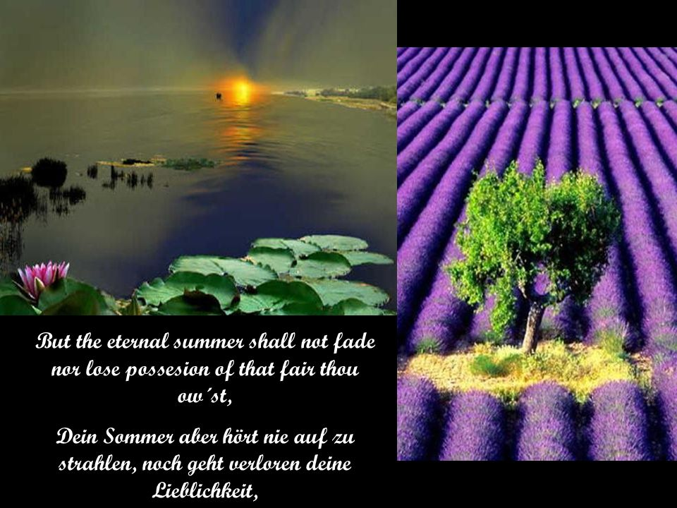 But the eternal summer shall not fade nor lose possesion of that fair thou ow´st,