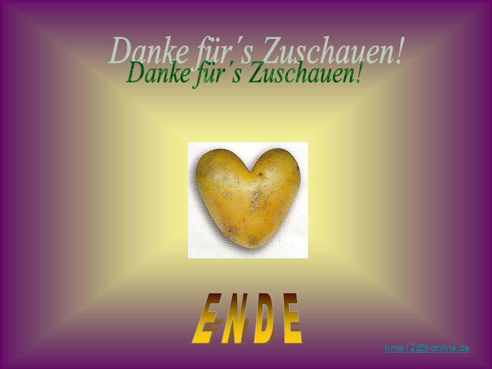 Danke für´s Zuschauen! E N D E hme12@t-online.de