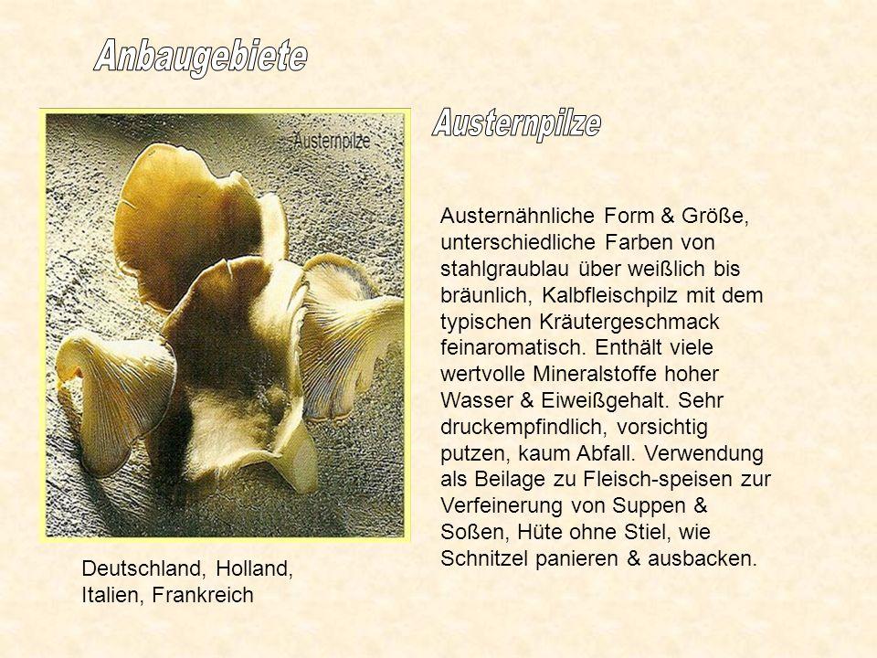 Anbaugebiete Austernpilze