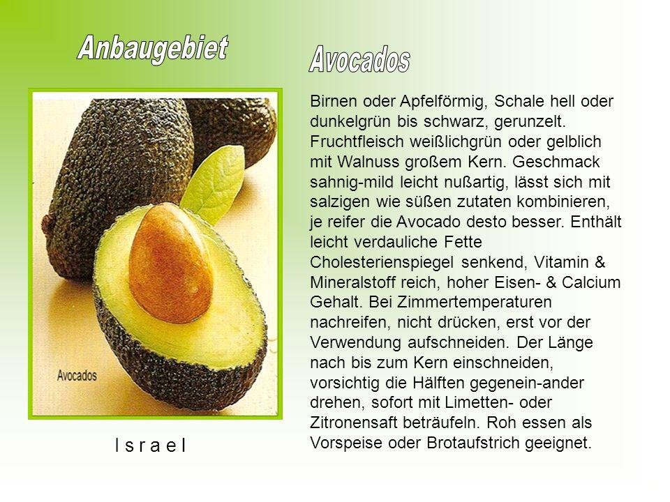 Anbaugebiet Avocados I s r a e l