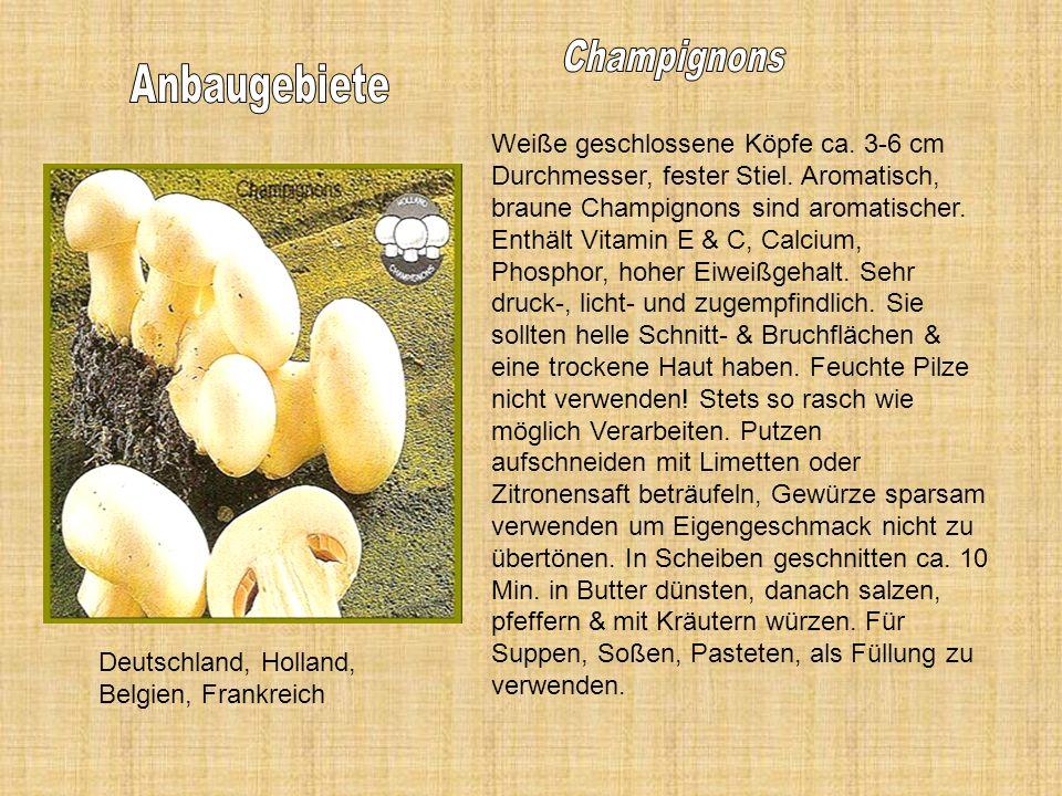 Anbaugebiete Champignons
