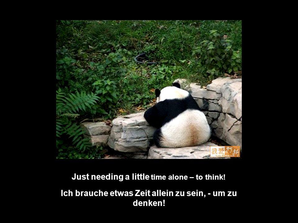 Ich brauche etwas Zeit allein zu sein, - um zu denken!
