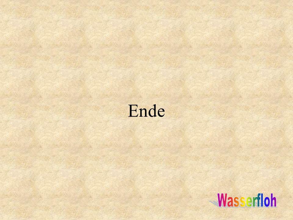 Ende Wasserfloh