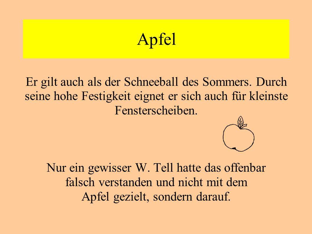 Apfel Er gilt auch als der Schneeball des Sommers. Durch seine hohe Festigkeit eignet er sich auch für kleinste Fensterscheiben.