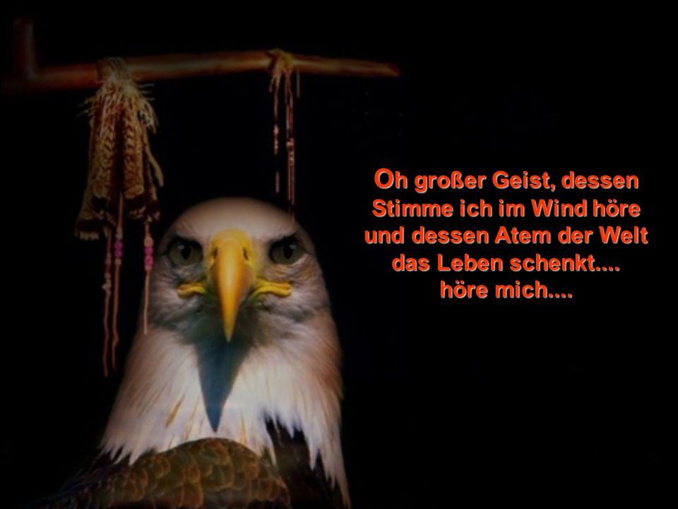 Oh großer Geist, dessen Stimme ich im Wind höre und dessen Atem der Welt das Leben schenkt....