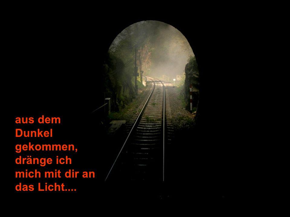 aus dem Dunkel gekommen, dränge ich mich mit dir an das Licht....