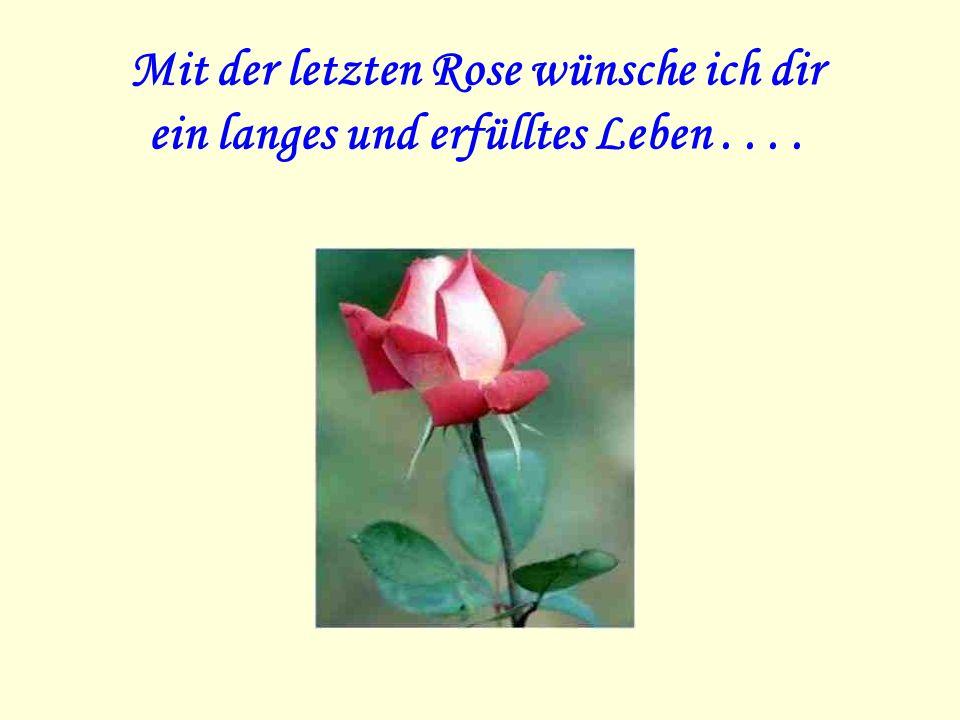 Mit der letzten Rose wünsche ich dir ein langes und erfülltes Leben . . . .