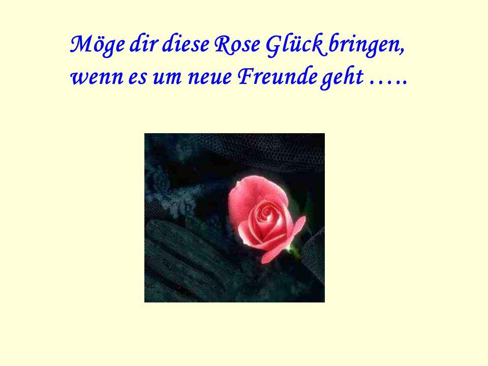 Möge dir diese Rose Glück bringen, wenn es um neue Freunde geht …..