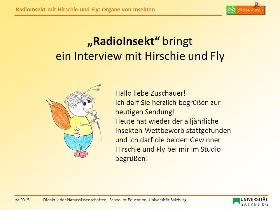 """""""RadioInsekt bringt ein Interview mit Hirschie und Fly"""