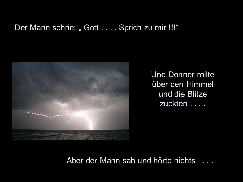 """Der Mann schrie: """" Gott . . . . Sprich zu mir !!!"""