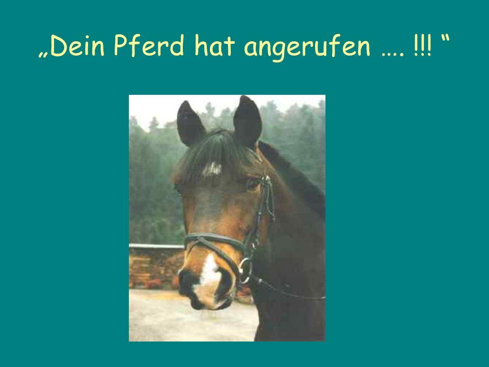 """""""Dein Pferd hat angerufen …. !!!"""