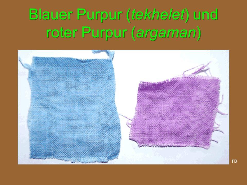 Blauer Purpur (tekhelet) und roter Purpur (argaman)