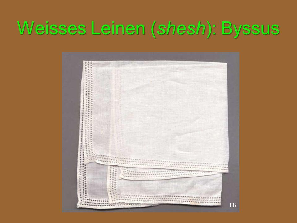 Weisses Leinen (shesh): Byssus