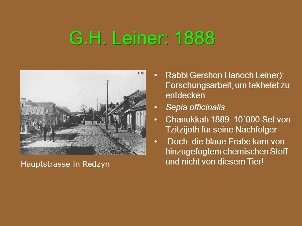 G.H. Leiner: 1888 Rabbi Gershon Hanoch Leiner): Forschungsarbeit, um tekhelet zu entdecken. Sepia officinalis.