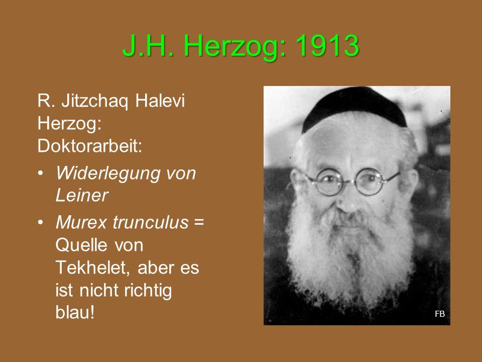 J.H. Herzog: 1913 R. Jitzchaq Halevi Herzog: Doktorarbeit: