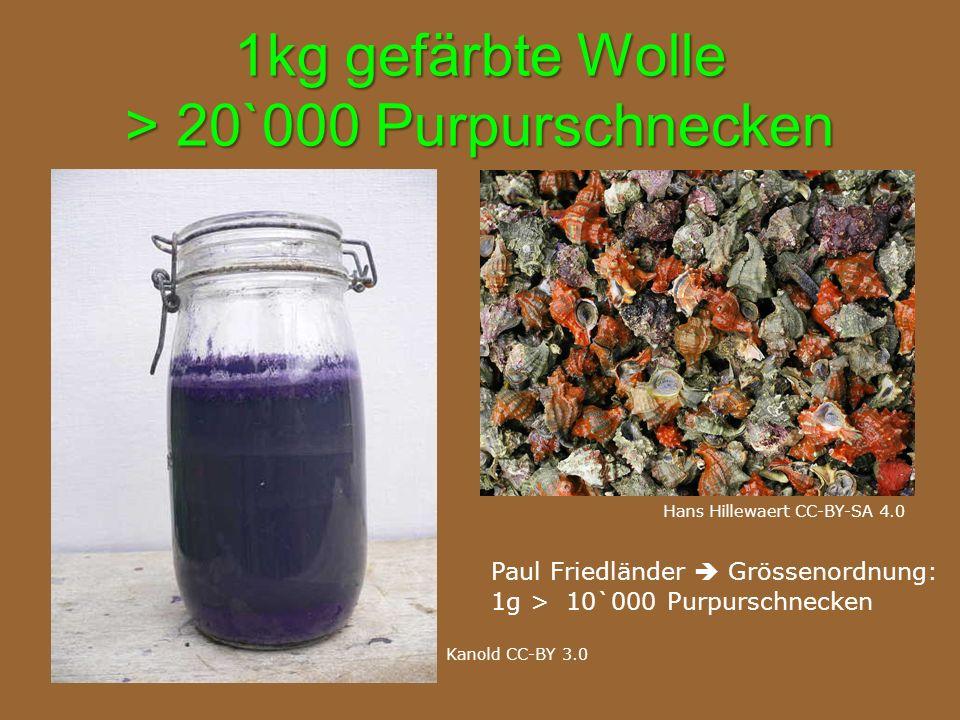 1kg gefärbte Wolle > 20`000 Purpurschnecken