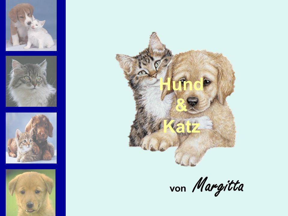 Hund & Katz von Margitta