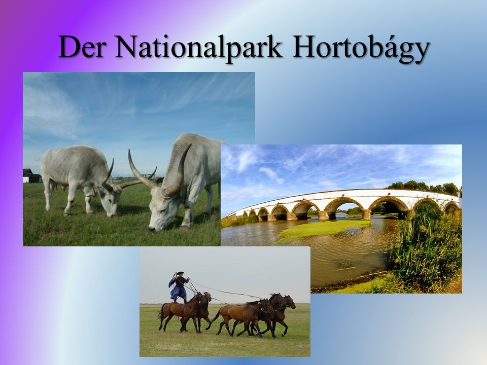 Der Nationalpark Hortobágy