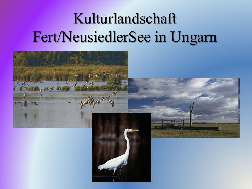 Kulturlandschaft Fert/NeusiedlerSee in Ungarn