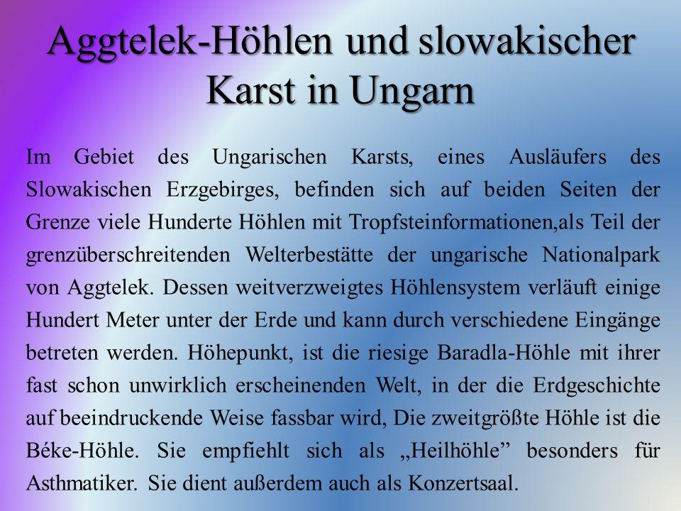 Aggtelek-Höhlen und slowakischer Karst in Ungarn