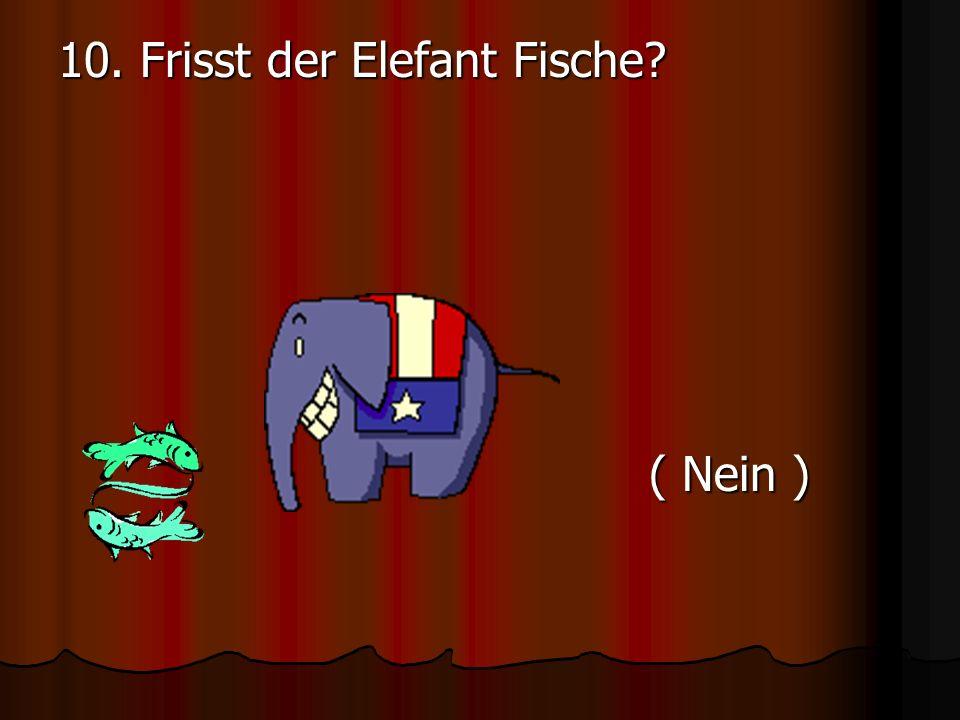 10. Frisst der Elefant Fische