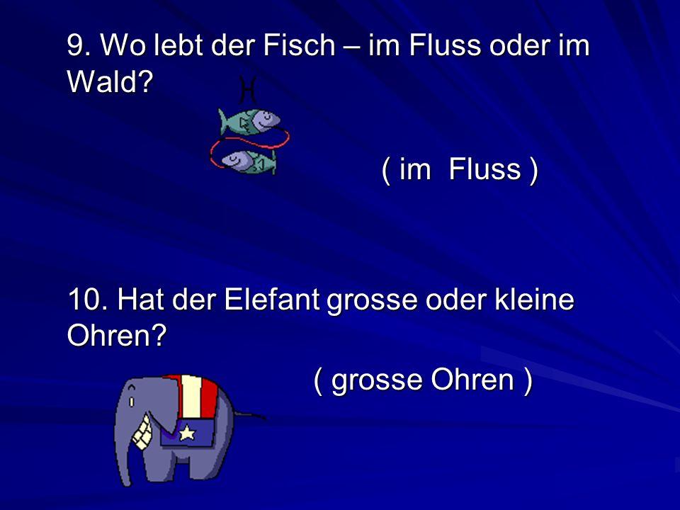 9. Wo lebt der Fisch – im Fluss oder im Wald