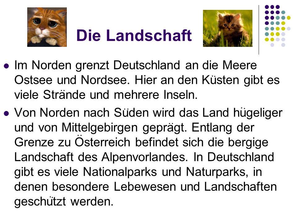 Die Landschaft Im Norden grenzt Deutschland an die Meere Ostsee und Nordsee. Hier an den Kusten gibt es viele Strande und mehrere Inseln.