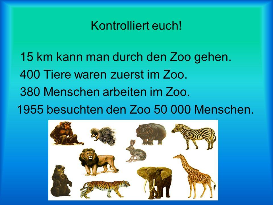 Kontrolliert euch! 15 km kann man durch den Zoo gehen. 400 Tiere waren zuerst im Zoo. 380 Menschen arbeiten im Zoo.